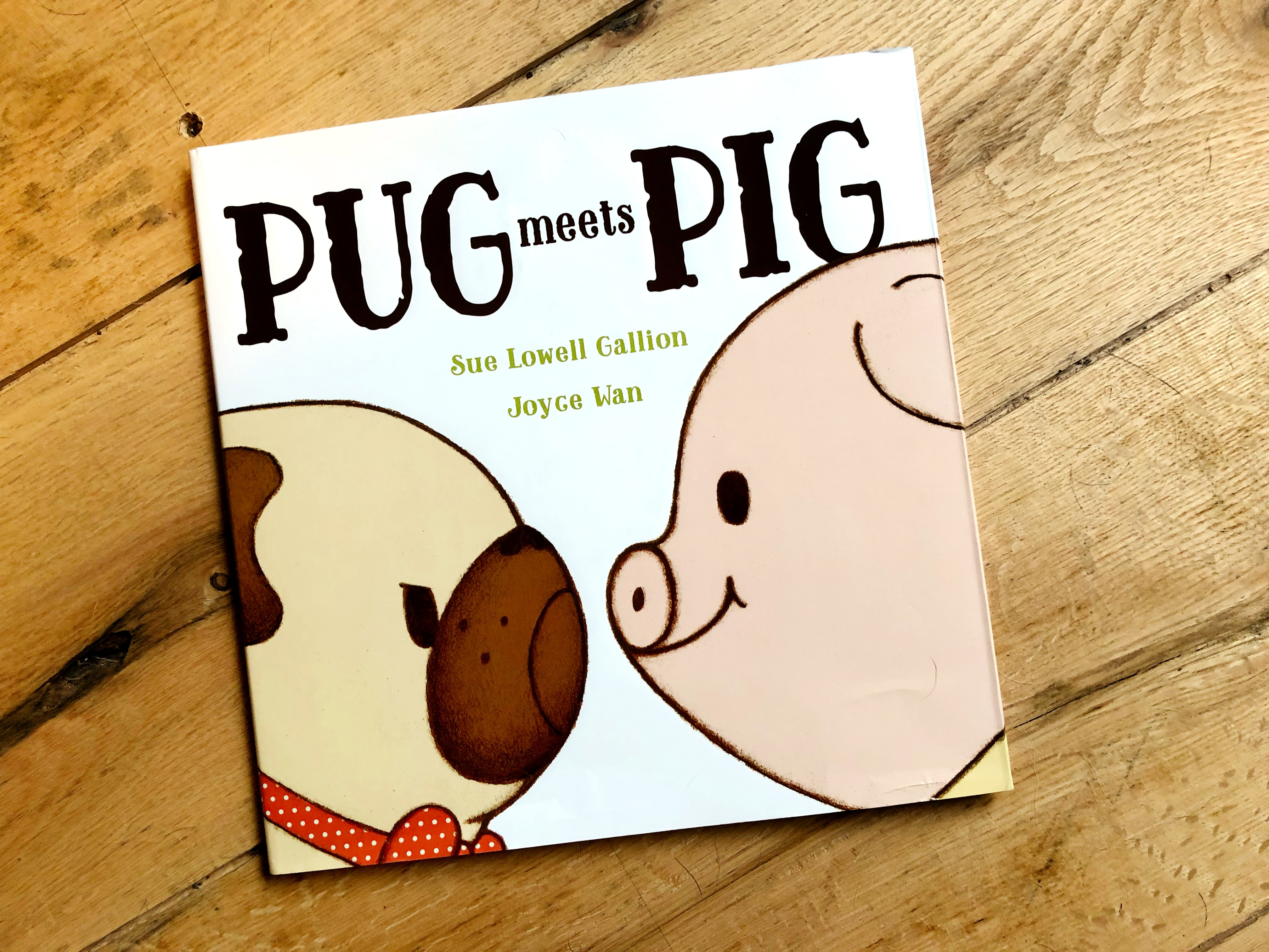 Gallion, Sue Lowell - Pug Meets Pig (1)